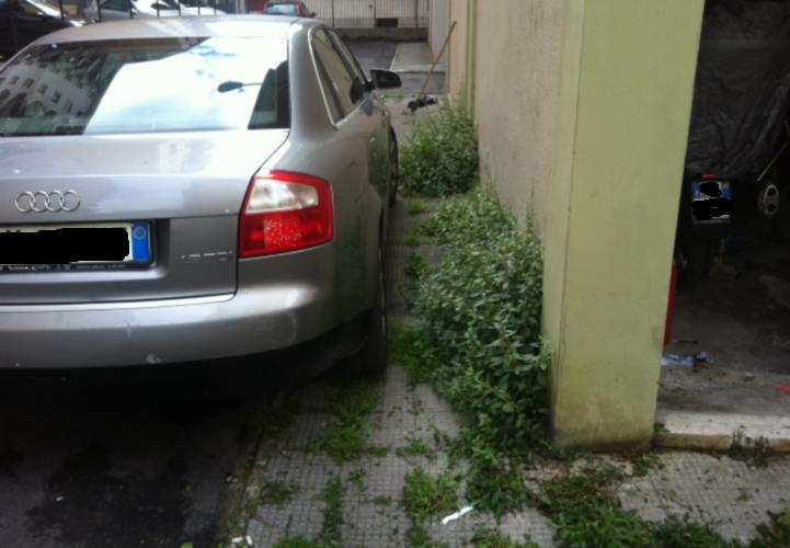 Via Luciani Erbacce sul marciapiede