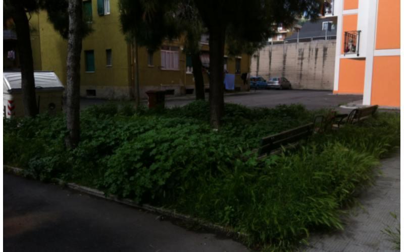 Via Luciani ancora erbacce