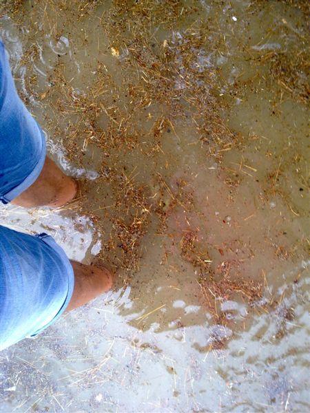 23 luglio 2012, zona Campo Europa allagata, foto Nazzareno Cecchini 1 l'acqua inizia a scendere