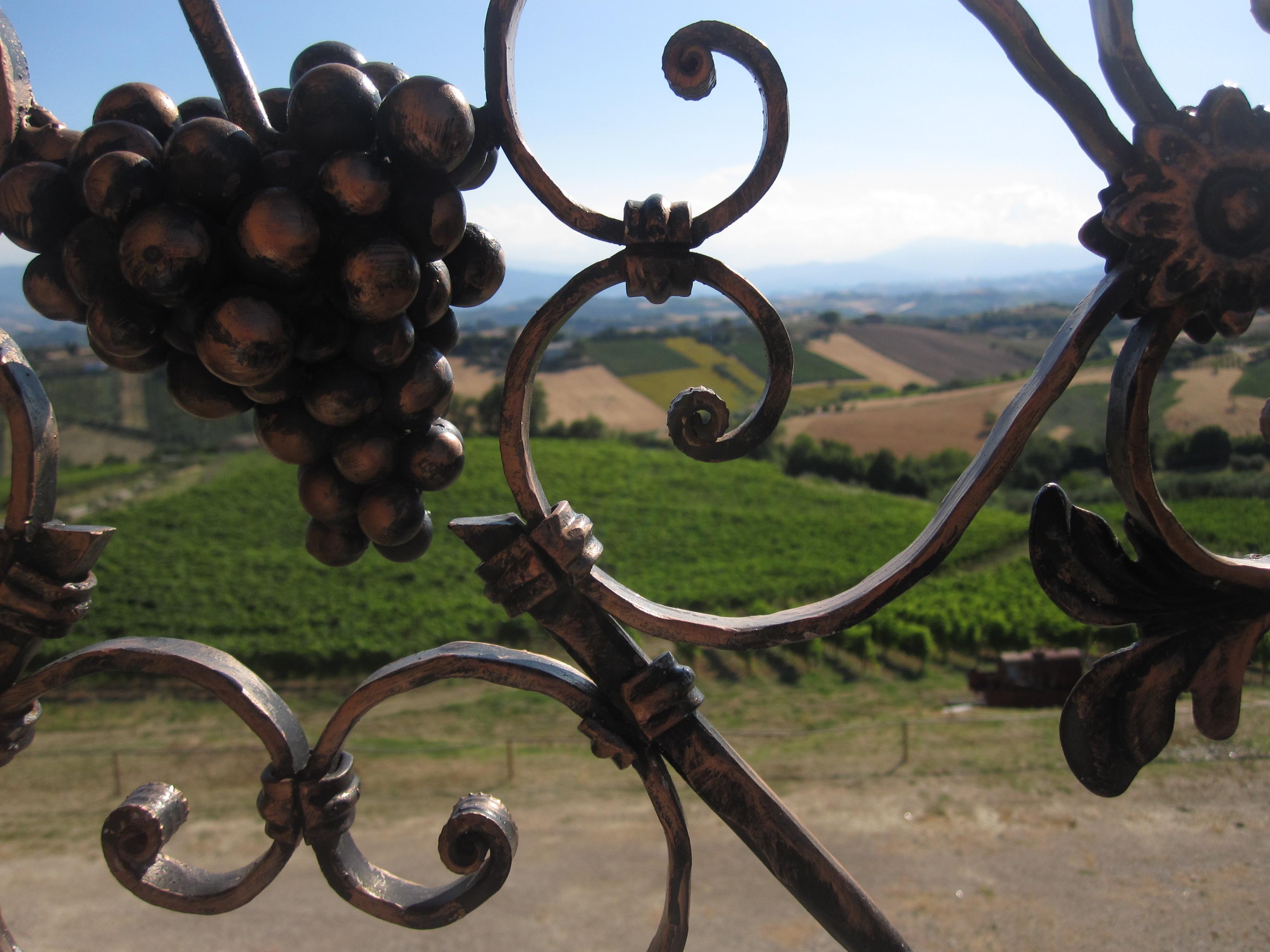 Cherri d'Acquaviva, quando la passione per il vino incontra l'amore per la nostra terra