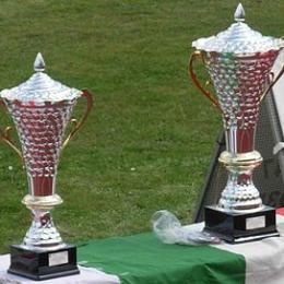 Coppa Italia Serie D
