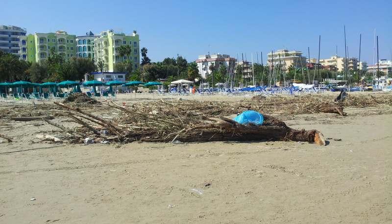 Detriti in spiaggia dopo l'alluvione del 14 settembre (2)