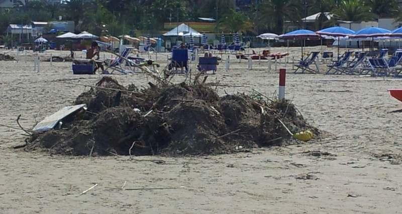 Detriti in spiaggia dopo l'alluvione del 14 settembre (4)