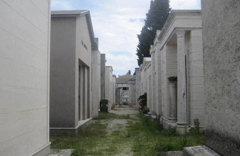 Cimitero di Grottammare. Erbacce