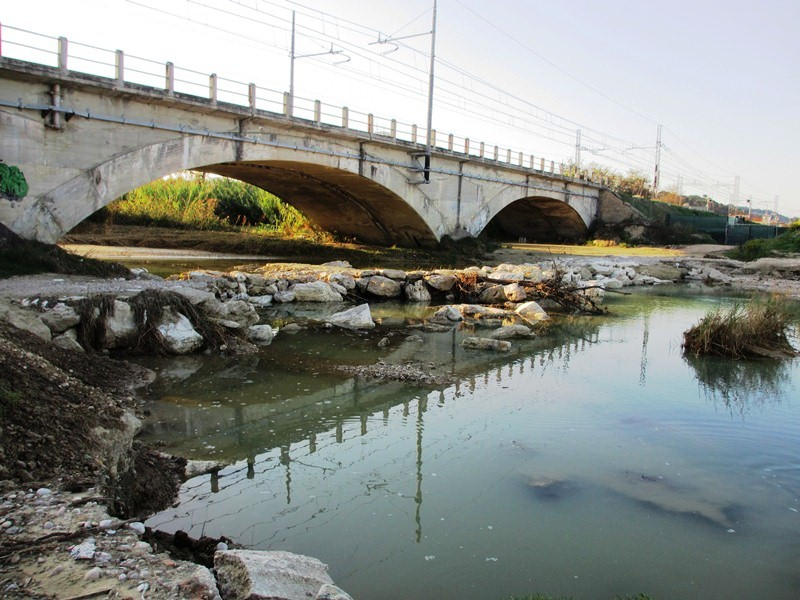 Foce Menocchia  2012