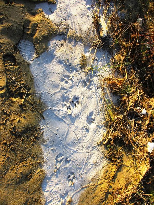 Menocchia  calce cemento su un lato della foce