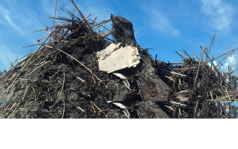 Montagne di rifiuti nella spiaggia di Ragnola, 3 ottobre 2012 (3)