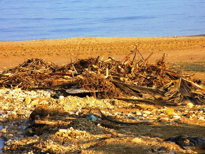 Spiaggia fronte concessione Gabry  (1)