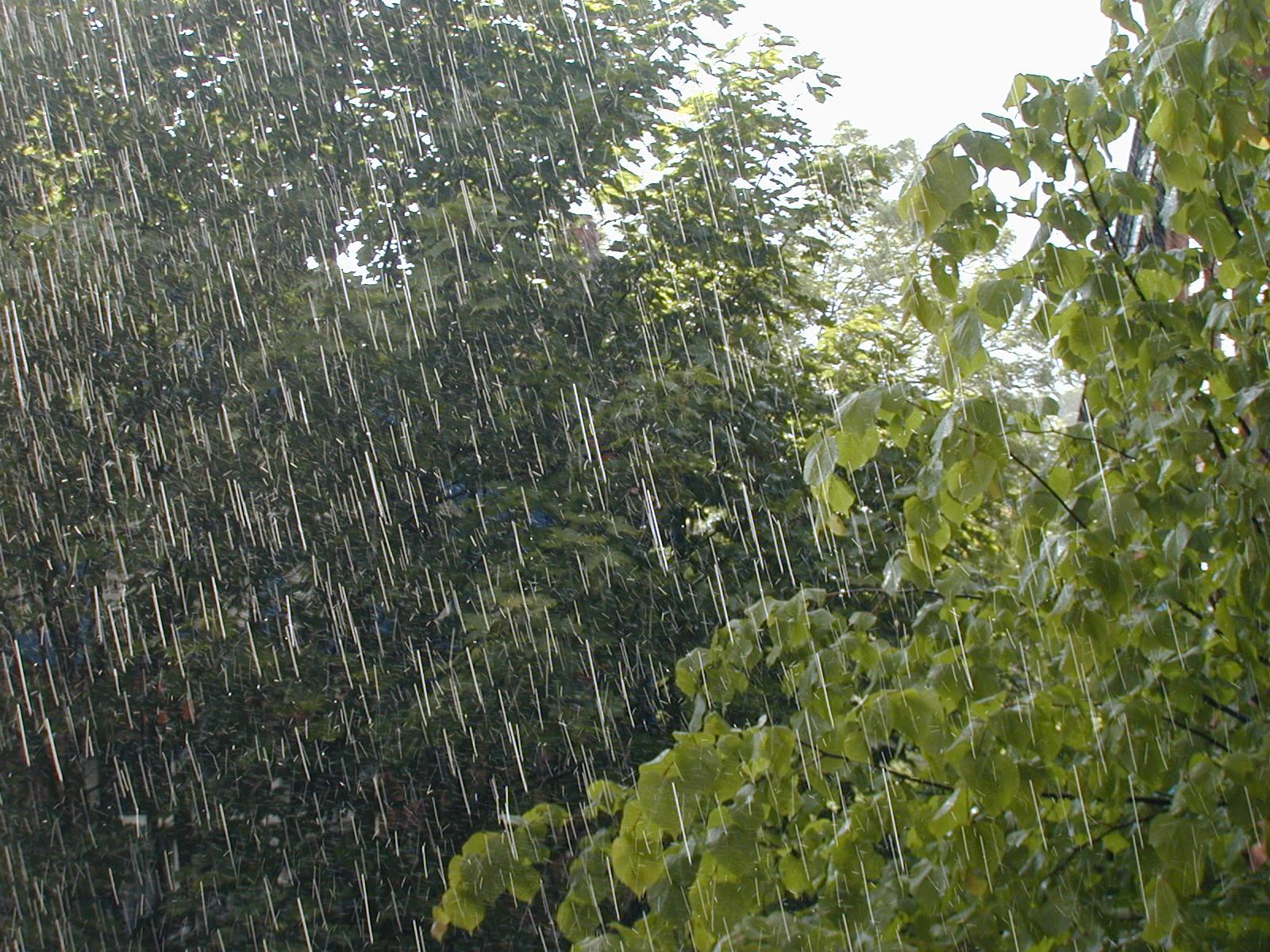 Piogge e precauzioni