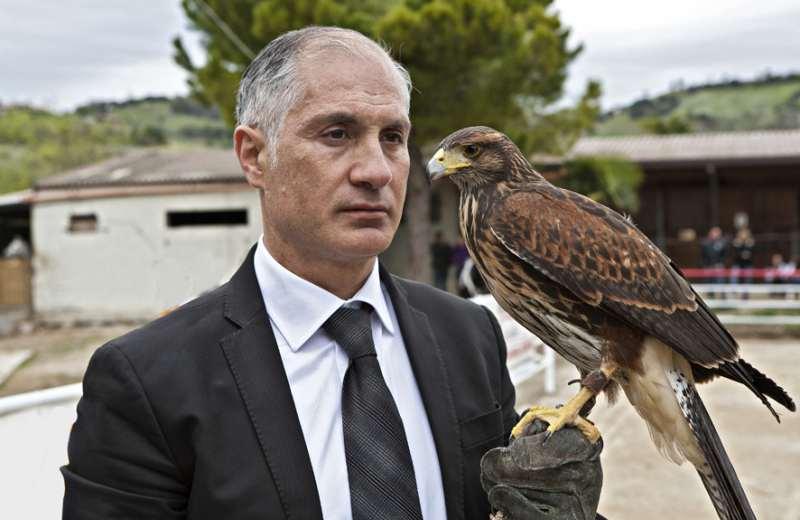 Filippo Olivieri e il suo falco