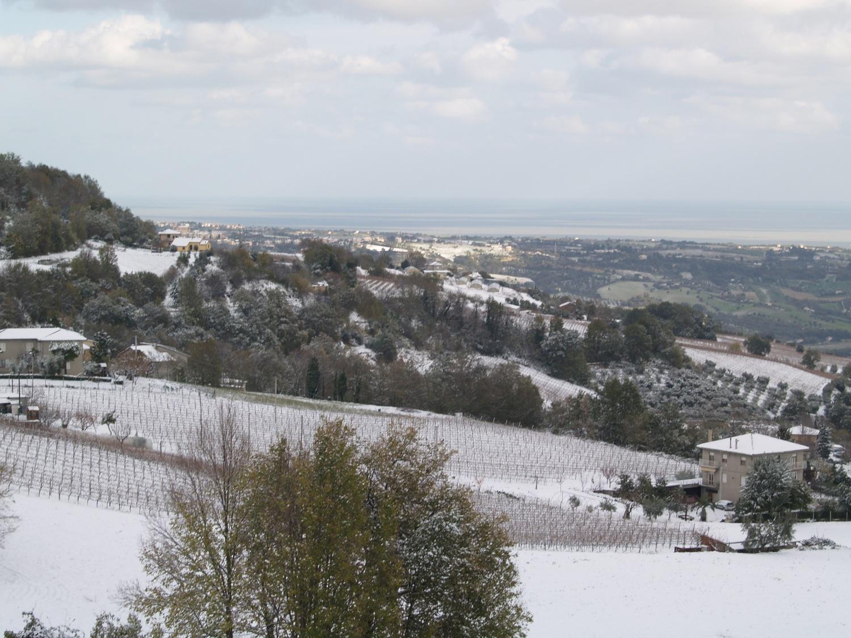 Neve a Ripatransone, foto Annalisa Agostini, 9 dicembre 2012 2