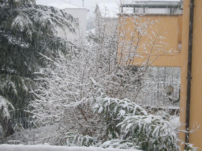 giusi micheli_perle di neve