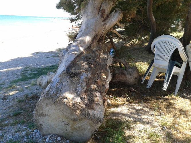 roberta corimbi_Angolo di spiaggia privato