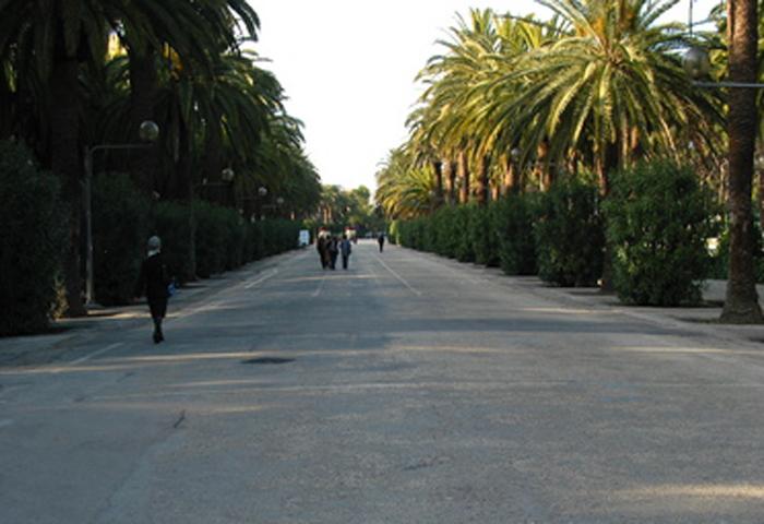 Viale Buozzi