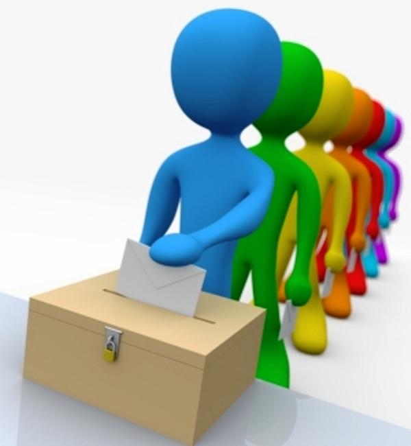 Votazioni google immagini