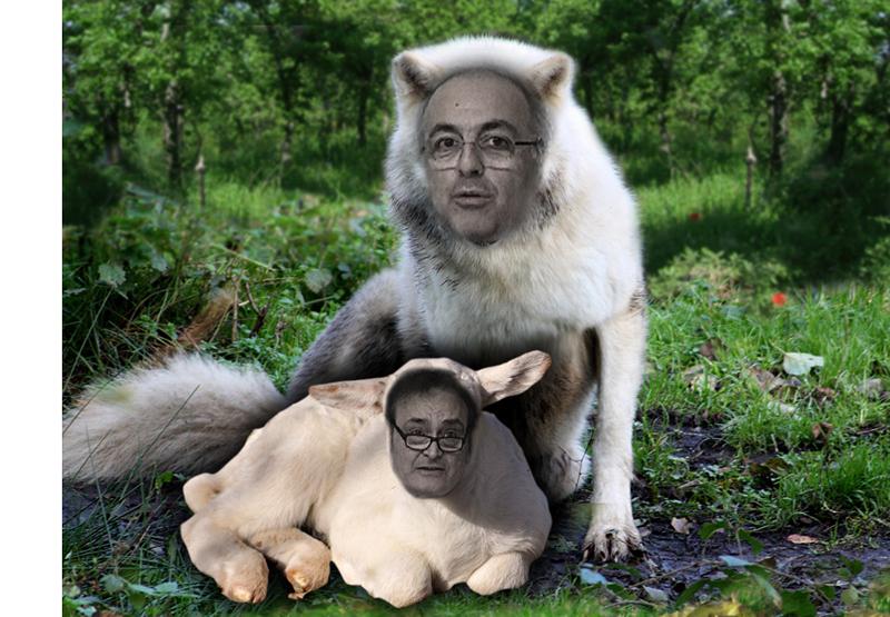 Il lupo (Agostini) che dimora con l'agnello (Giorgini)