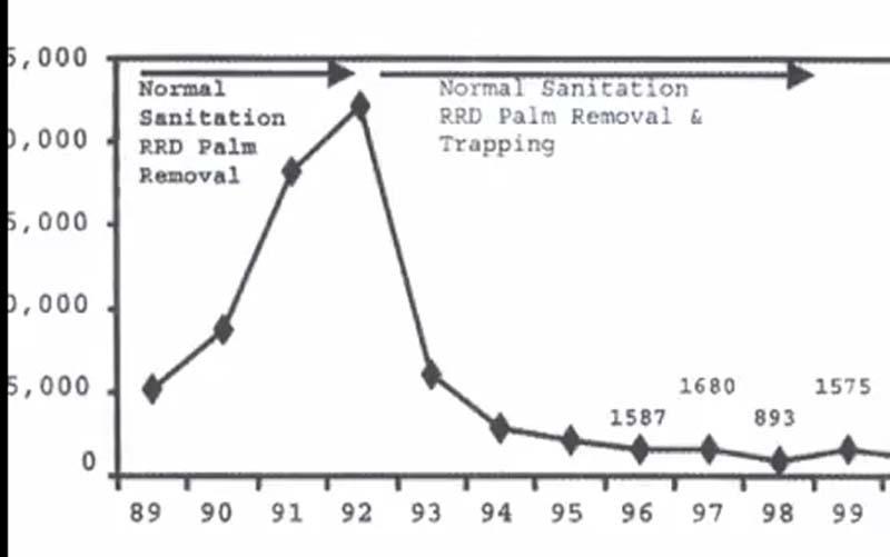 Ecco come potrebbe incidere l'uso delle trappole per il punteruolo rosso in base al numero di palme attaccate all'anno