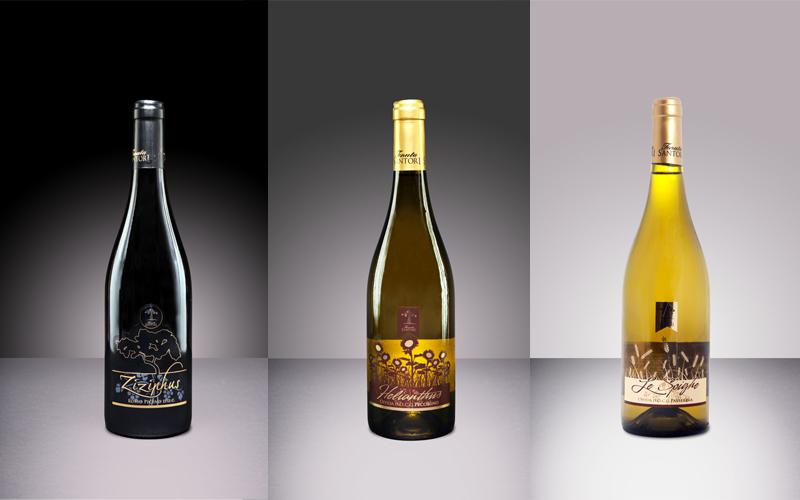 I vini di Tenuta Santori