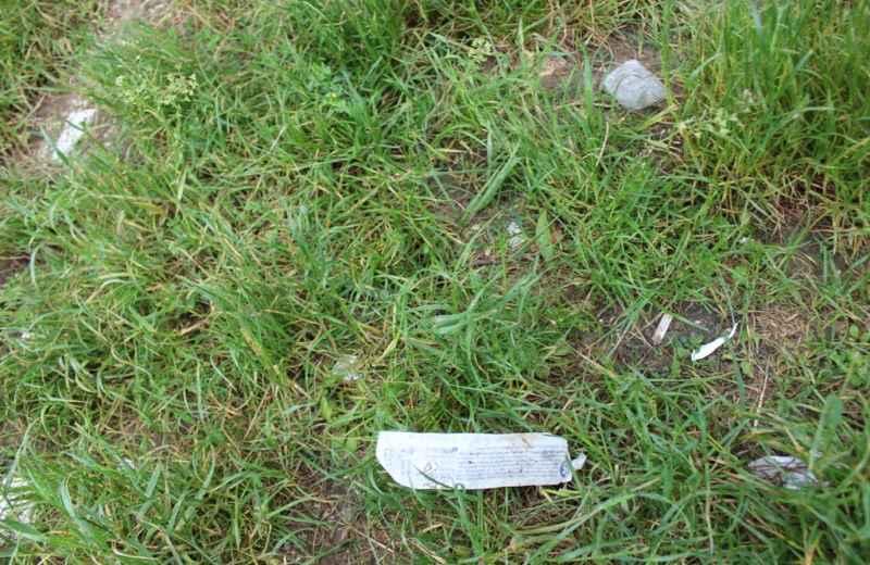 Degrado nel Parco della Madonnetta (3)