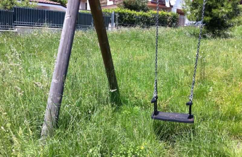 Erba alta in un parco pubblico della Valtesino (2)