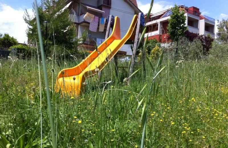 Erba alta in un parco pubblico della Valtesino (3)