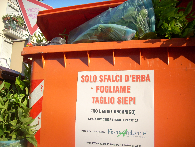 Conferimento dei rifiuti