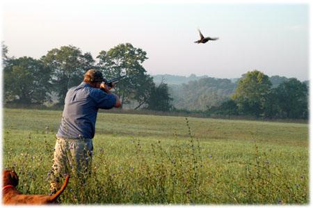 caccia-agli-uccelli