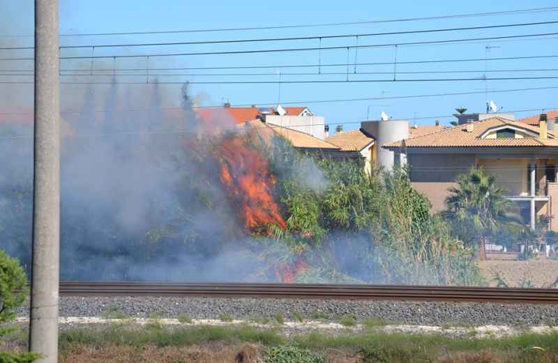 Incendio sulla ferrovia 2 (foto di Simona Ballatore e Nico Gaspari)