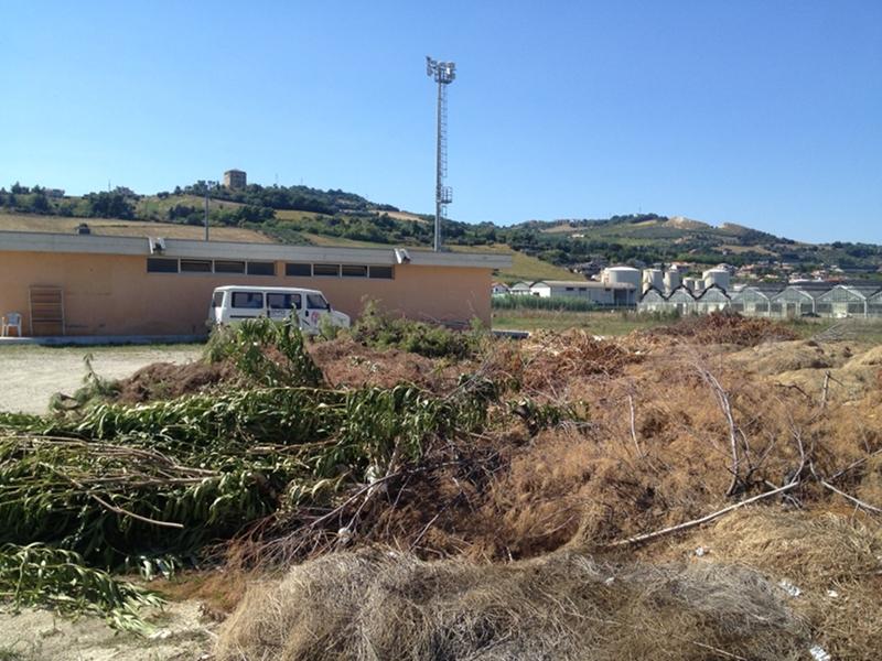 il tagliato del Comune truentino scaricato al campo sportivo di Villa Rosa
