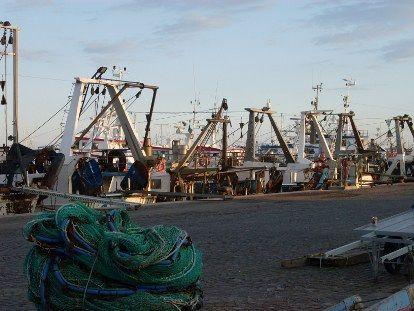 Uno scorcio del porto di San Benedetto del Tronto