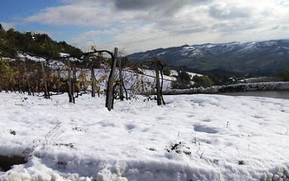 Neve a Ripatransone, novembre 2013