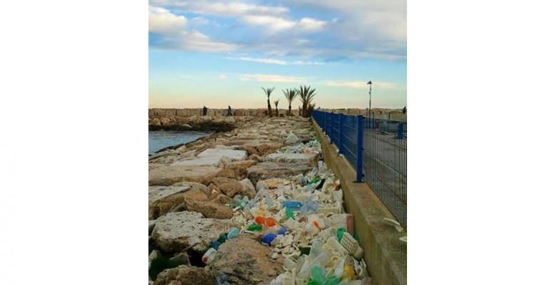 Cumuli di rifiuti al Molo Sud (foto Stefano Angellotti)
