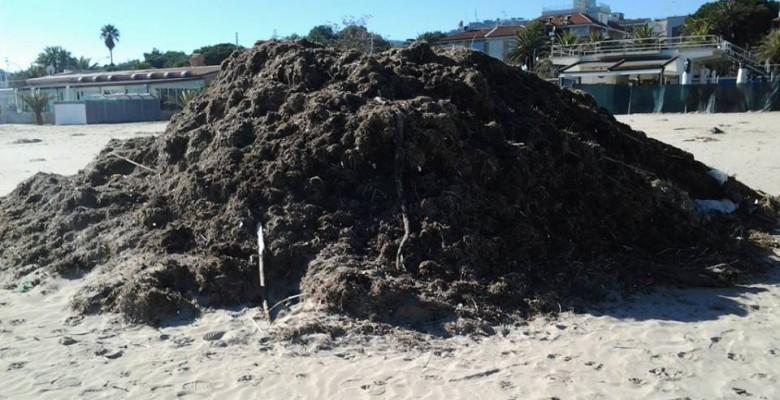 Numerose le colline di detriti in spiaggia