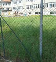 Prato incolto nei pressi della scuola Cappella
