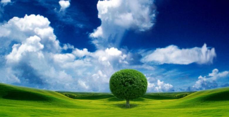 Ecologia per l'ambiente