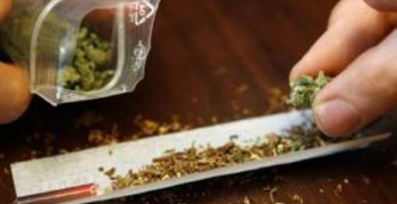 Marijuana (foto di repertorio)