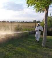 Disinfestazione da zanzare rinviata