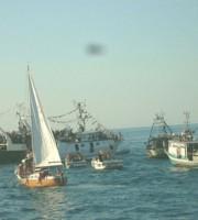 Festa della Marina
