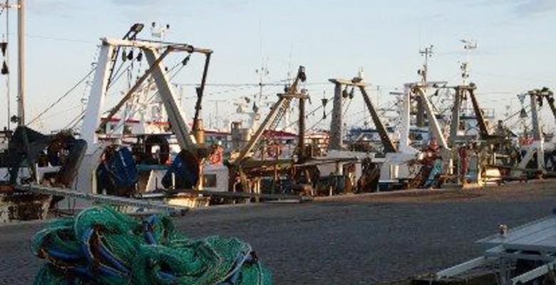 Pescherecci nel porto di San Benedetto del Tronto