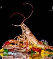 2015 AWARD Gold  FIIPA - Food Foto di Luigi Fedeli di Symbol