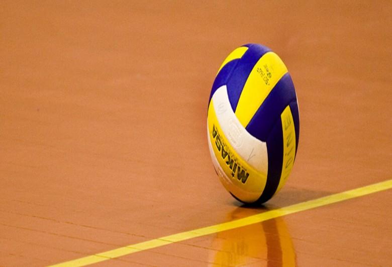 Pallone da volley (fonte google)