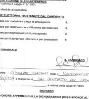 Le spese elettorali di Gaspari nel 2011