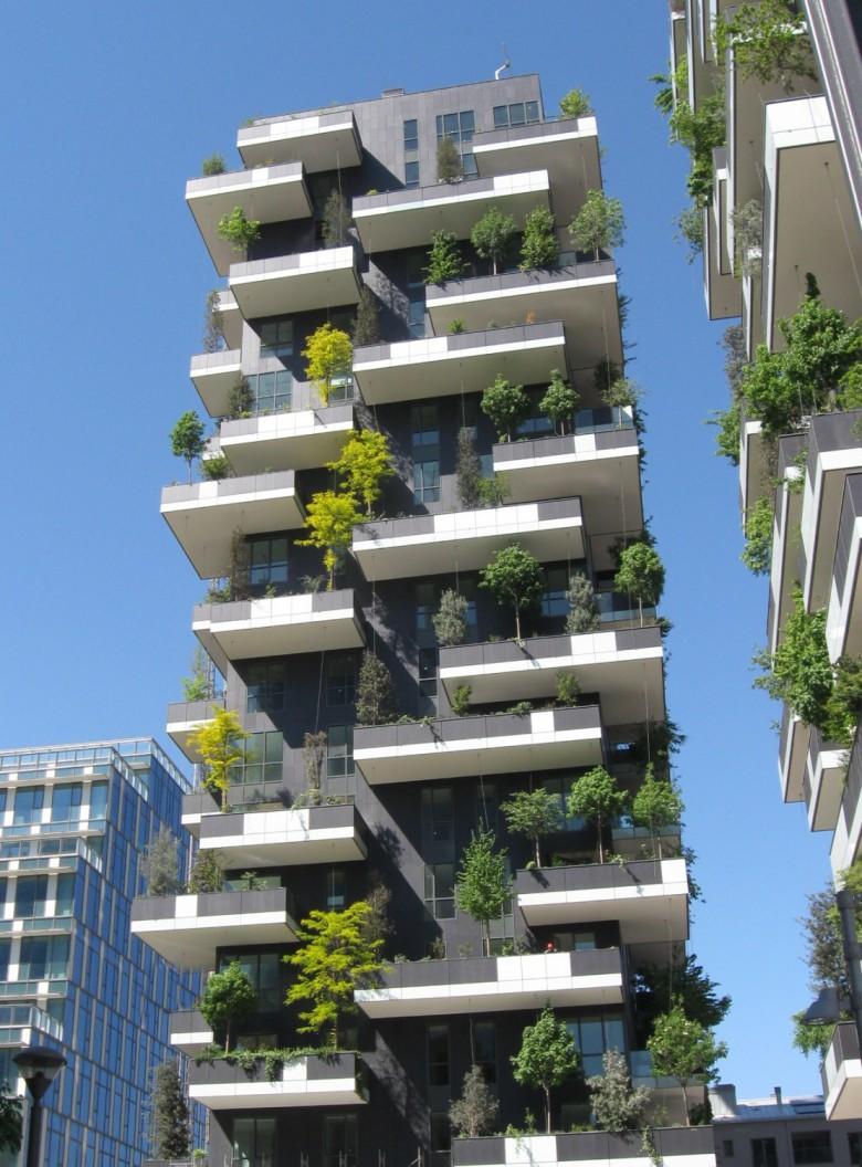 Un albero in citt vale pi di due in un parco ecco for Bosco verticale architetto
