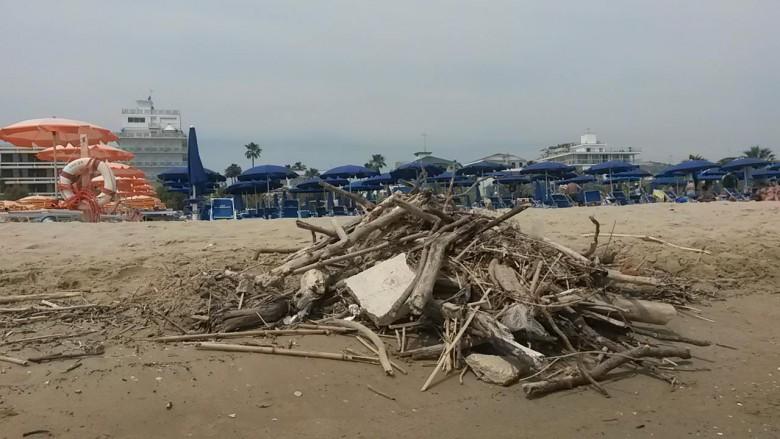 Tronchi e detriti in spiaggia