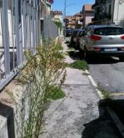 Degrado in via Monti e De Amicis