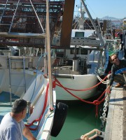 Sopralluogo al porto