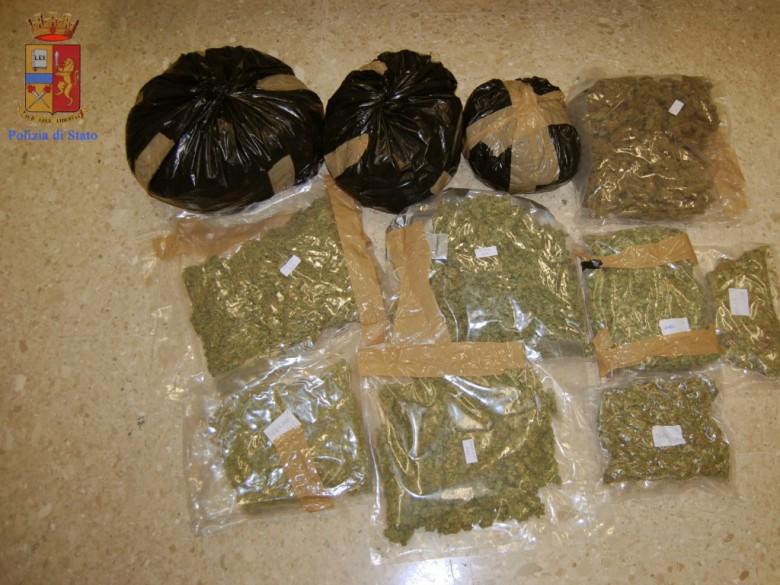 Marijuana sequestrata (foto della Questura di Ascoli)