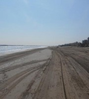 Spiaggia pulita, 25 marzo 2016