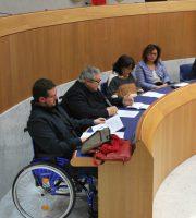 Consulta disabilità con canditati