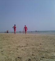 Bagnini di salvataggio in Riviera (foto di repertorio)